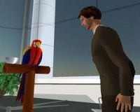 Embodied Conversational Agent and a virtual parrot in Second Life